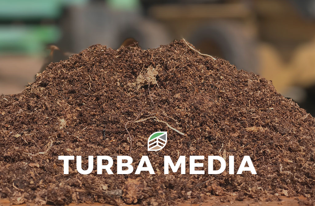 Turba Media - Deitan Solutions