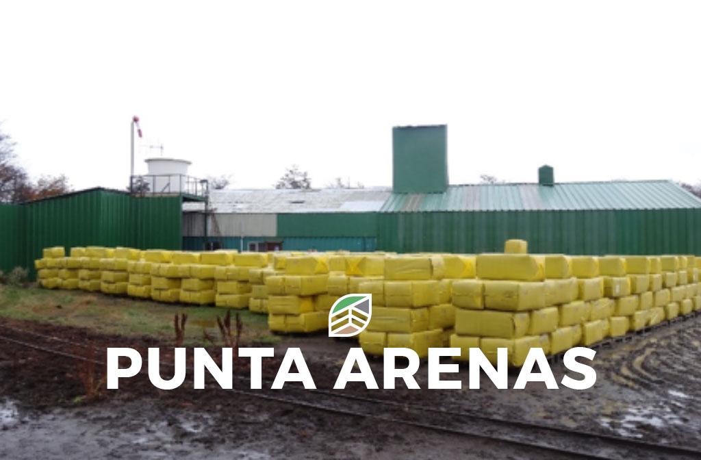 Deitan Solutions - Punta Arenas - Turba en Bales